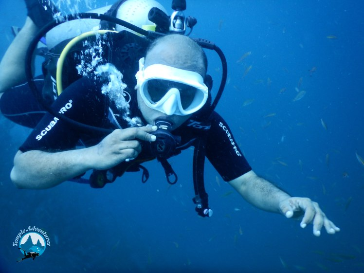 vidyasagar, diving at temple reef, pondicherry00019.jpg